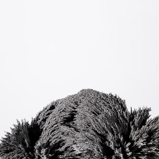 Close-up van het magnetische metaal scheren geïsoleerd op witte achtergrond Gratis Foto