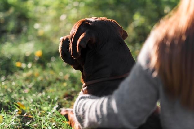 Close-up van hond met zijn huisdiereneigenaar bij park Gratis Foto