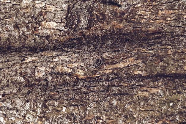 Close-up van houten textuurachtergrond Gratis Foto