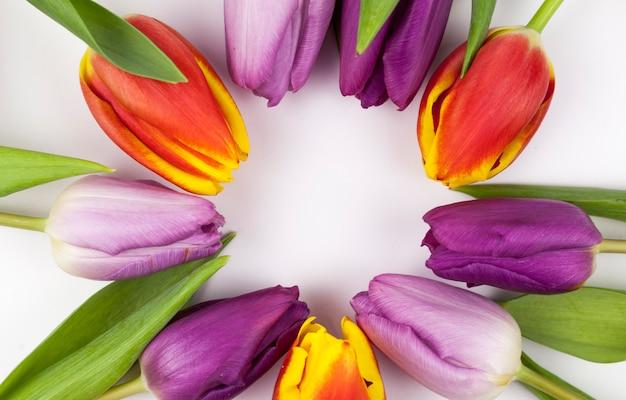 Close-up van kleurrijke tulpen gerangschikt in cirkelvorm Gratis Foto