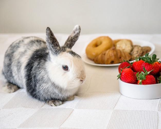 Close-up van konijn dichtbij verse aardbeien Gratis Foto