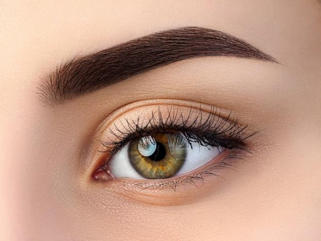 Close-up van mooi bruin vrouwelijk oog. perfecte trendy wenkbrauw. goed zicht, contactlenzen, wenkbrauwbalk of fashion wenkbrauwmake-up concept Premium Foto