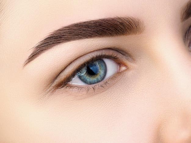 Close-up van mooie blauwe vrouwelijke oog. perfecte trendy wenkbrauw. goed zicht, contactlenzen, wenkbrauwbalk of fashion wenkbrauwmake-up concept Premium Foto