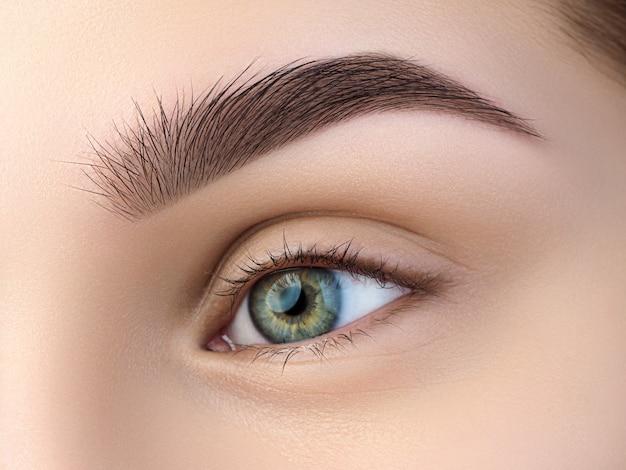 Close-up van mooie groene vrouwelijke oog. perfecte trendy wenkbrauw. goed zicht, contactlenzen, wenkbrauwbalk of fashion wenkbrauwmake-up concept Premium Foto