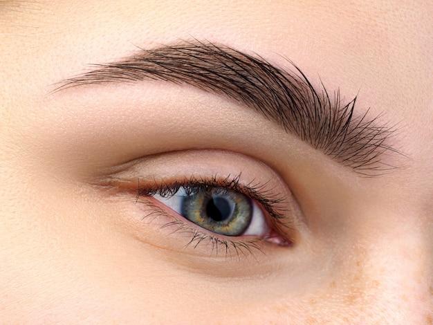 Close-up van mooie groene vrouwelijke oog. perfecte trendy wenkbrauw. goed zicht, contactlenzen, wenkbrauwbalk of mode-concept voor wenkbrauwmake-up Premium Foto