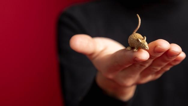 Close-up van rattenbeeldje voor chinees nieuw jaar Gratis Foto