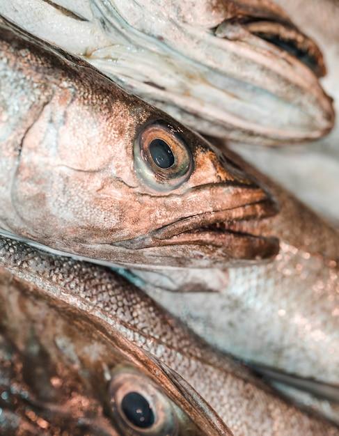 Close-up van verse vis in de markt Gratis Foto