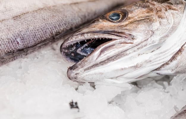 Close-up van verse vissen die op ijs worden gelegd Gratis Foto