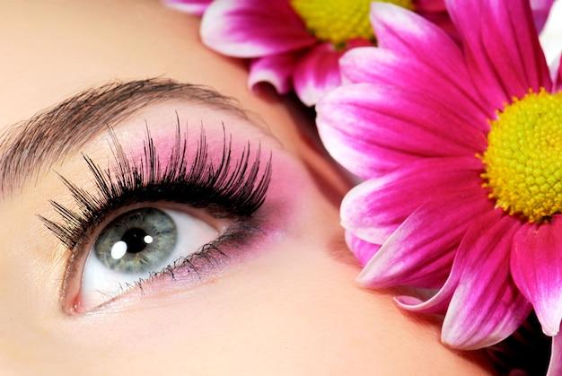 Close-up van vrouwen groen oog. roze bloem op ruimte. Gratis Foto