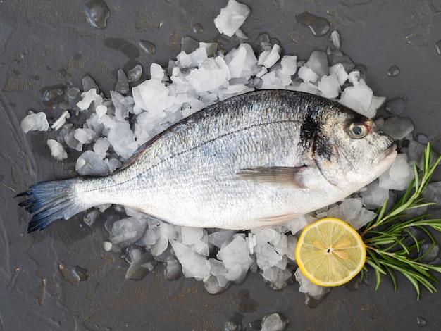 Close-up verse vis met citroen en rozemarijn Gratis Foto