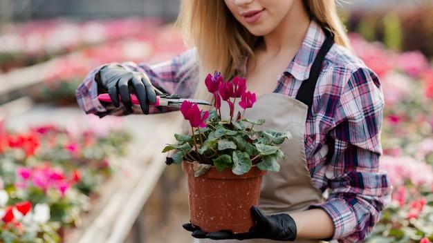 Close-upvrouw die extra bloembladeren verwijderen Gratis Foto