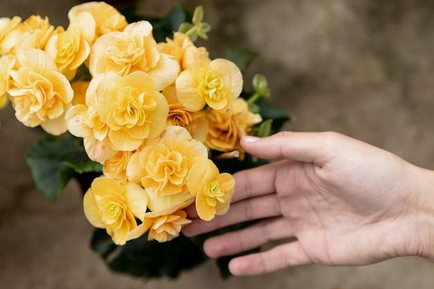 Close-upvrouw wat betreft gele bloemen Gratis Foto