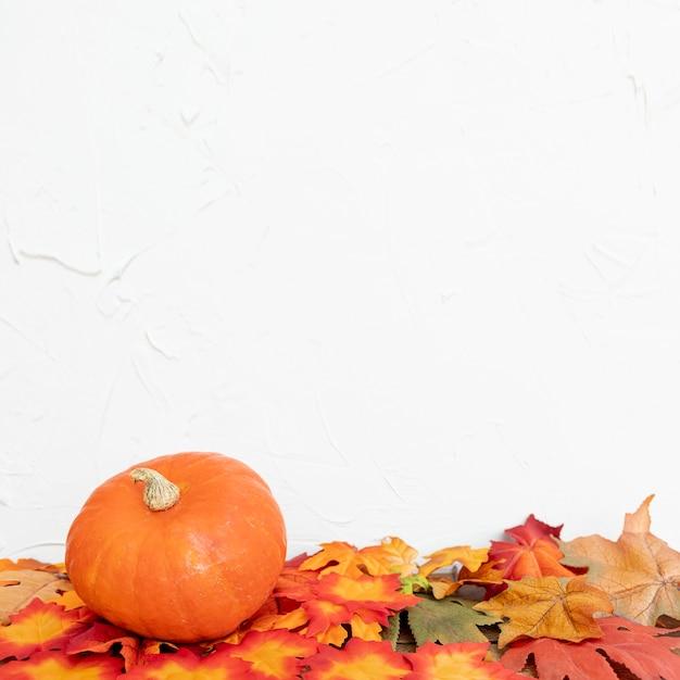 Colourulbladeren en pompoen met witte achtergrond Gratis Foto