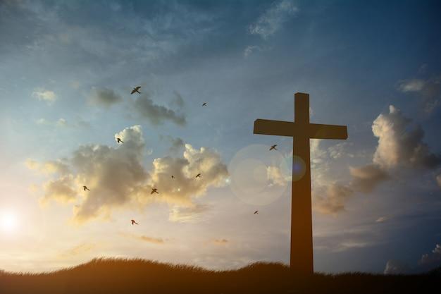 Concept conceptuele zwarte kruis religie symbool silhouet in gras over zonsondergang of zonsopgang hemel Premium Foto