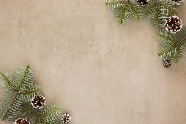 Coniferen kegels en bladeren bovenaanzicht Gratis Foto
