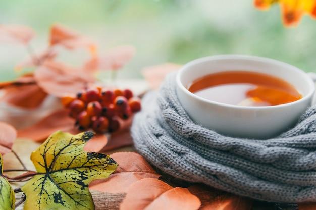 Cup in gebreide sjaal met herfstbladeren Gratis Foto