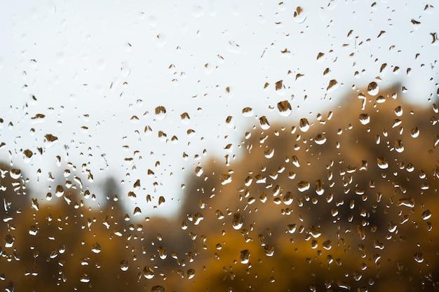 Dalingen van regen op venster tegen sombere regenachtige hemel en gouden bomenachtergrond Premium Foto