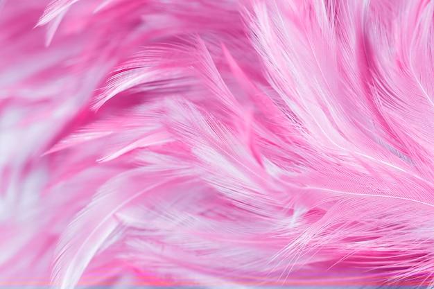 De abstracte textuur van de kippenveer voor achtergrond Premium Foto