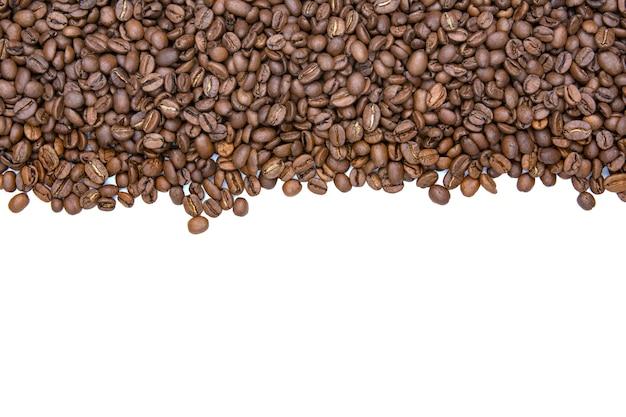 De bonenstreep van de koffie die op witte achtergrond wordt geïsoleerd. ruimte voor tekst kopiëren. Premium Foto