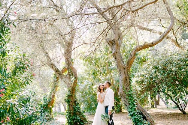 De bruid en bruidegom knuffelen tussen pittoreske bomen bedekt met klimop in het park, de bruidegom Premium Foto