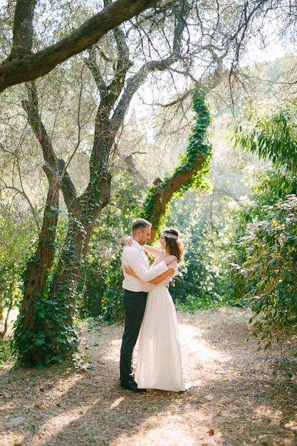 De bruid en bruidegom knuffelen tussen pittoreske bomen bedekt met klimop in het park Premium Foto