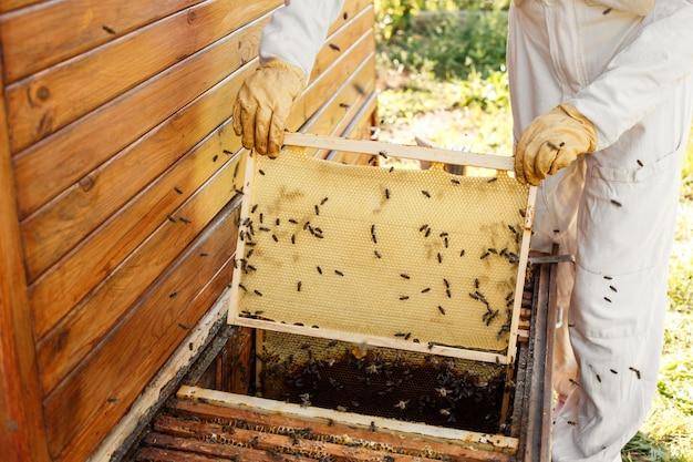De close-uphanden van imker houden houten kader met honingraat. Premium Foto