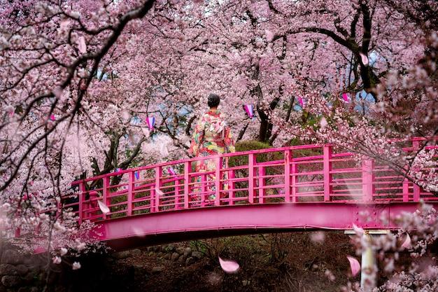 De gang van het reizigersmeisje op de houten brug in de tuin van de sakurabloem Premium Foto