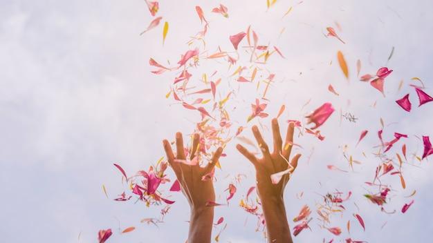 De hand die van het wijfje bloembloemblaadjes tegen hemel in zonlicht werpt Gratis Foto