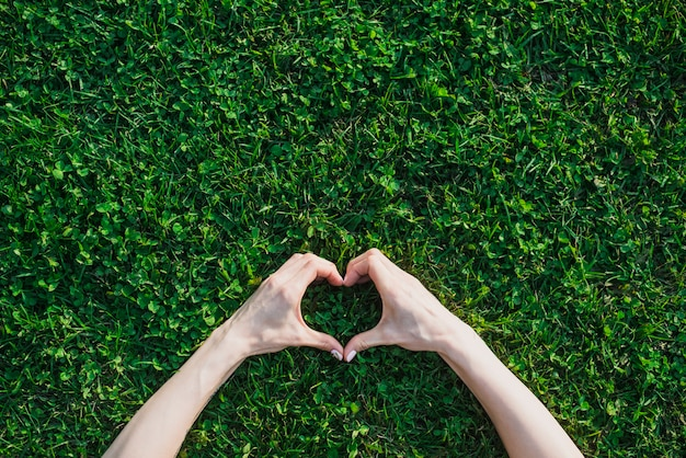 De hand die van het wijfje hartvorm over groen gras maakt Gratis Foto