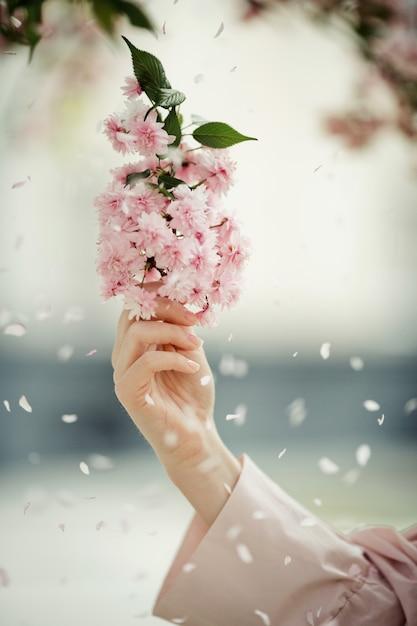 De hand van de vrouw met een sakuratak onder bloemblaadjes Gratis Foto