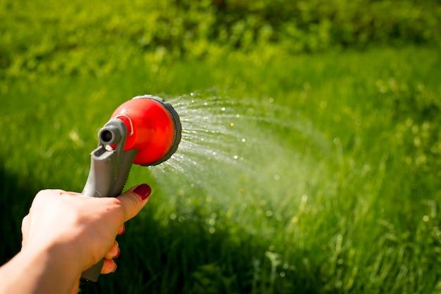 De hand van de vrouw met tuinslang het water geven van installaties Premium Foto