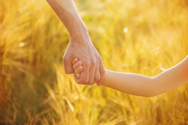 De hand van kind en vader op tarweveld. Premium Foto