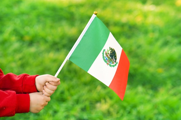 De handen van het meisje houden de vlag van mexico Premium Foto