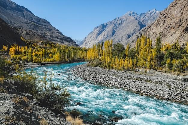 De herfstscène, blauwe turkooise gilgit-rivier die door gupis, ghizer, pakistan vloeien. Premium Foto