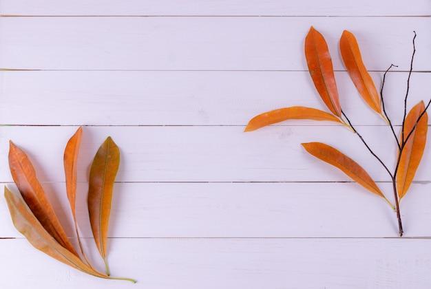 De herfsttak, droge bladeren op witte houten achtergrond. bovenaanzicht, kopieer ruimte voor tekst. herfst concept. Premium Foto