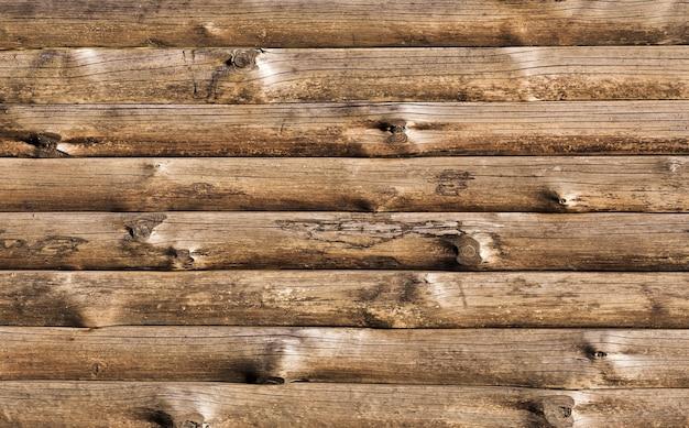De houten droge achtergrond van boomboomstammen Gratis Foto