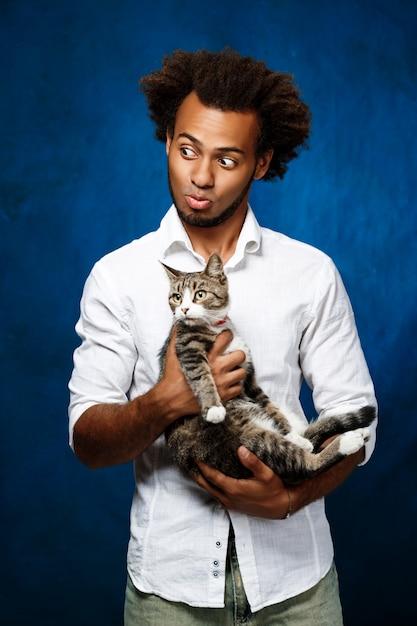 De jonge knappe afrikaanse kat van de mensenholding over blauwe muur. Gratis Foto