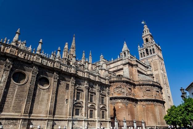 De kathedraal van sevilla en de giralda Premium Foto