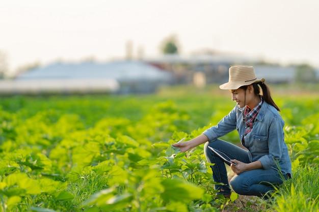 De landbouwer is van plan om op tablets te bewerken. Premium Foto