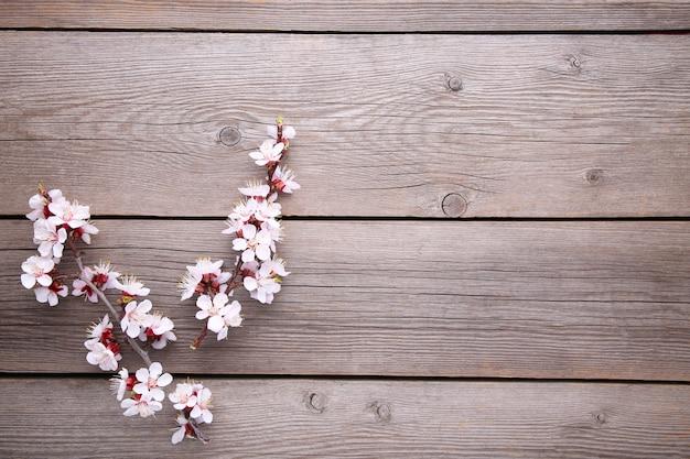 De lente bloeiende takken op grijze houten achtergrond. Premium Foto