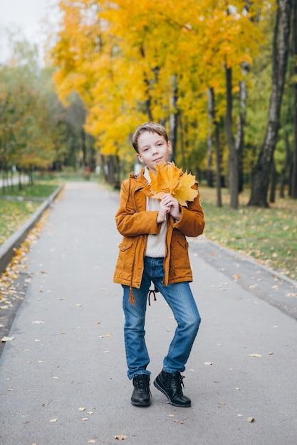 De leuke jongen loopt en stelt in een kleurrijk de herfstpark Premium Foto