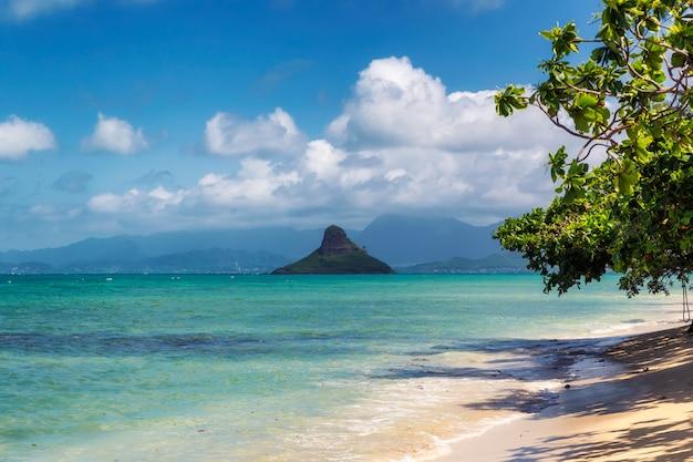 De mening van het de hoedeneiland van chinaman en mooi turkoois water bij kualoa-strand, oahu, hawaï Premium Foto