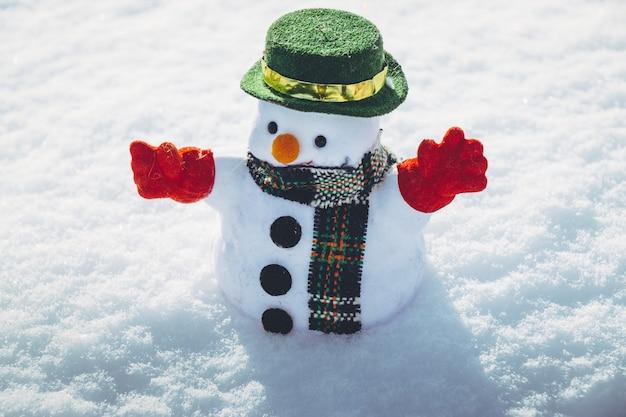 De mensentribune van de sneeuw onder stapel van sneeuw in park. de zon is warm maar koud in hokkaido, japan. Premium Foto