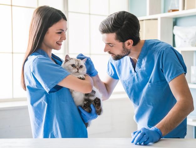 De mooie jonge dierenarts houdt leuke kat. Premium Foto