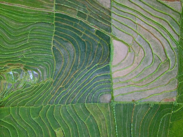 De natuurlijke schoonheidstextuur van indonesië van luchtfoto's tegelijkertijd Premium Foto