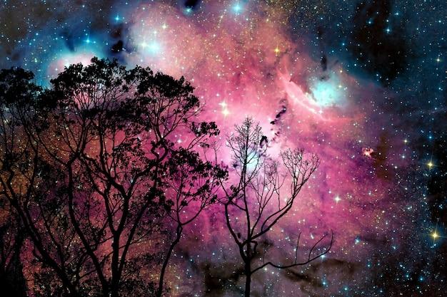 De nevel van de onduidelijk beeldmelkweg terug op de hemel van de nachtwolk op boom Premium Foto