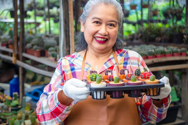 De pot van de bejaardeholding van cactus met verkoopprijs Gratis Foto