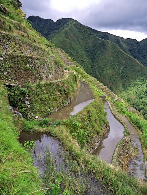 De rijstterrassen in banaue, filippijnen Premium Foto