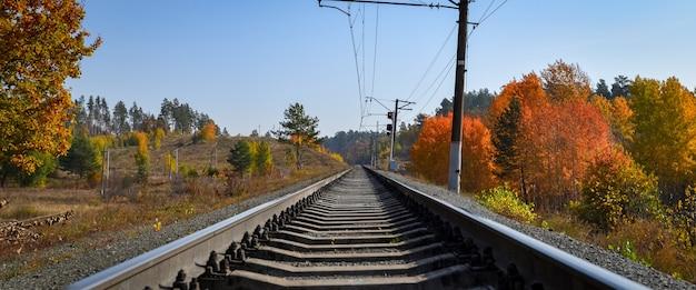De spoorlijn loopt door een prachtig herfstbos met kleurrijke bomen. Premium Foto