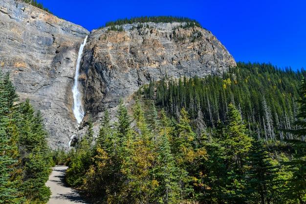 De takakkaw-waterval is de op één na hoogste waterval in west-canada, yoho national park, british columbia. Premium Foto